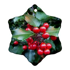 HOLLY 1 Snowflake Ornament (2-Side)
