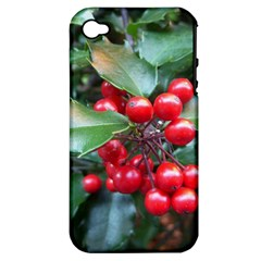HOLLY 1 Apple iPhone 4/4S Hardshell Case (PC+Silicone)