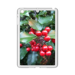 HOLLY 1 iPad Mini 2 Enamel Coated Cases