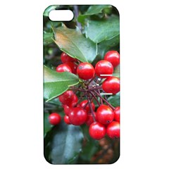 HOLLY 1 Apple iPhone 5 Hardshell Case with Stand