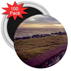 Playa Verde Coast In Montevideo Uruguay 3  Magnets (100 pack)