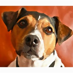 Jack Russell Terrier Canvas 20  x 24