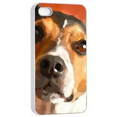 Jack Russell Terrier Apple iPhone 4/4s Seamless Case (White)