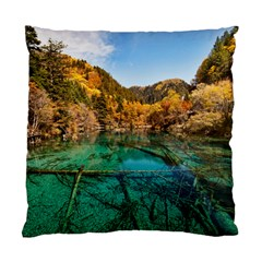 JIUZHAIGOU VALLEY 1 Standard Cushion Case (One Side)