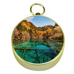 JIUZHAIGOU VALLEY 1 Gold Compasses