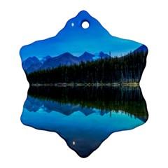 HERBERT LAKE Ornament (Snowflake)