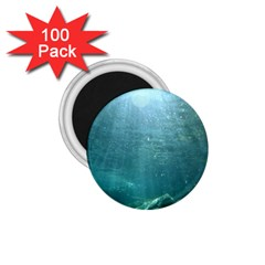 Crater Lake National Park 1 75  Magnets (100 Pack)