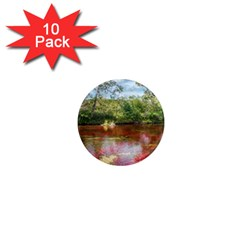 CANO CRISTALES 3 1  Mini Magnet (10 pack)