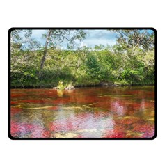 CANO CRISTALES 3 Fleece Blanket (Small)