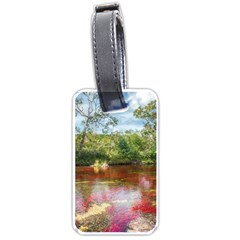 CANO CRISTALES 3 Luggage Tags (Two Sides)