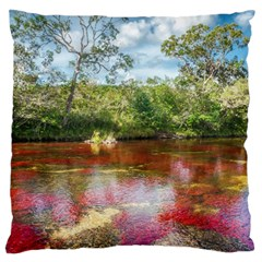 CANO CRISTALES 3 Large Flano Cushion Cases (Two Sides)