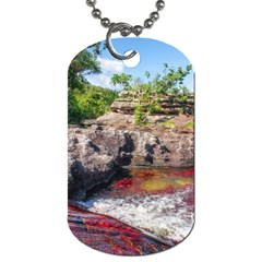CANO CRISTALES 2 Dog Tag (One Side)