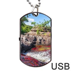 CANO CRISTALES 2 Dog Tag USB Flash (One Side)
