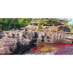 Cano Cristales 2 You Are Invited 3d Greeting Card (8x4)