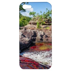 CANO CRISTALES 2 Apple iPhone 5 Hardshell Case