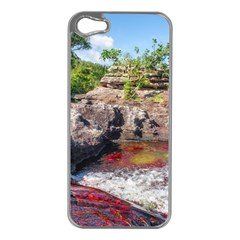 CANO CRISTALES 2 Apple iPhone 5 Case (Silver)