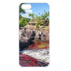 CANO CRISTALES 2 Apple iPhone 5 Seamless Case (White)