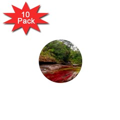 CANO CRISTALES 1 1  Mini Magnet (10 pack)