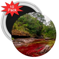 CANO CRISTALES 1 3  Magnets (10 pack)