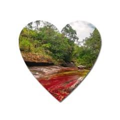 CANO CRISTALES 1 Heart Magnet