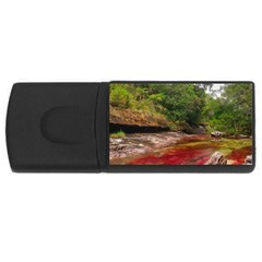 CANO CRISTALES 1 USB Flash Drive Rectangular (4 GB)