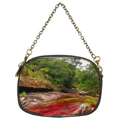 CANO CRISTALES 1 Chain Purses (Two Sides)
