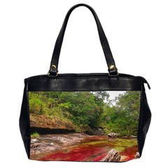 CANO CRISTALES 1 Office Handbags (2 Sides)