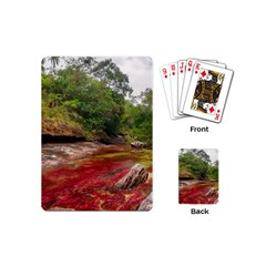 CANO CRISTALES 1 Playing Cards (Mini)