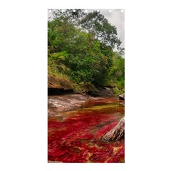 CANO CRISTALES 1 Shower Curtain 36  x 72  (Stall)
