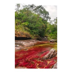 CANO CRISTALES 1 Shower Curtain 48  x 72  (Small)
