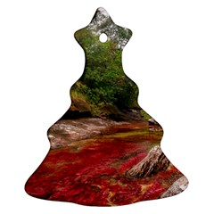 CANO CRISTALES 1 Christmas Tree Ornament (2 Sides)