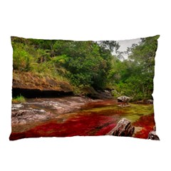 CANO CRISTALES 1 Pillow Cases (Two Sides)