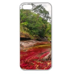 CANO CRISTALES 1 Apple Seamless iPhone 5 Case (Clear)