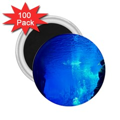 UNDERWATER TRENCH 2.25  Magnets (100 pack)