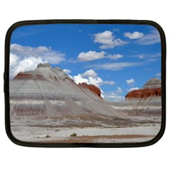 PETRIFIED FORREST TEPEES Netbook Case (XXL)