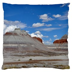 PETRIFIED FORREST TEPEES Large Flano Cushion Cases (Two Sides)