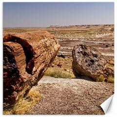 PETRIFIED DESERT Canvas 12  x 12