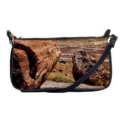 Petrified Desert Shoulder Clutch Bags