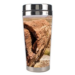 PETRIFIED DESERT Stainless Steel Travel Tumblers