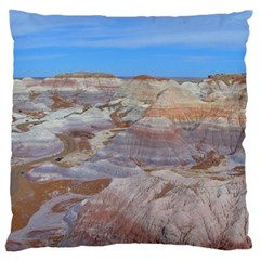 PAINTED DESERT Large Flano Cushion Cases (Two Sides)