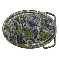 STONE FOREST 1 Belt Buckles