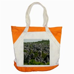 STONE FOREST 1 Accent Tote Bag