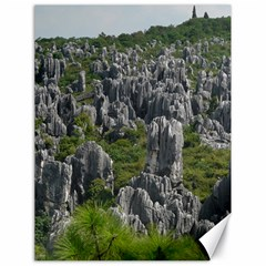 STONE FOREST 1 Canvas 18  x 24