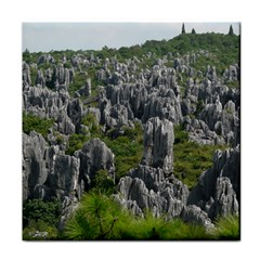 STONE FOREST 1 Face Towel