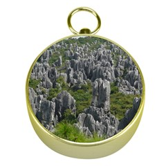 Stone Forest 1 Gold Compasses