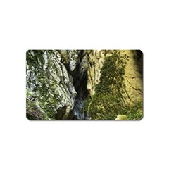 MOUNTAIN PATH Magnet (Name Card)
