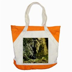 MOUNTAIN PATH Accent Tote Bag