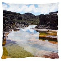 MOUNT RORAIMA 1 Standard Flano Cushion Cases (One Side)