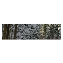 Snow On Road Satin Scarf (oblong)