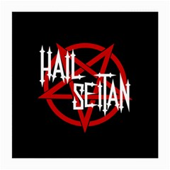 Hail Seitan Medium Glasses Cloth (2 Side)